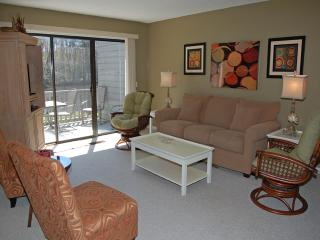 3374 Lake Forest - Sea Pines vacation rentals