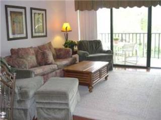 Village House 305 - Image 1 - Hilton Head - rentals