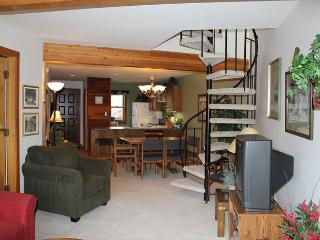 SS101 Great Condo w/Fireplace, Clubhouse, Wifi - Wildernest vacation rentals