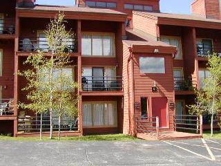 TR409 Timeshare Condo w/Wifi, Clubhouse, Mountain Views, Fireplace - Silverthorne vacation rentals