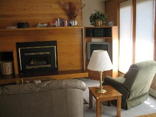 TR412 Timeshare Condo w/Wifi, Clubhouse, Mountain Views, Fireplace - Silverthorne vacation rentals