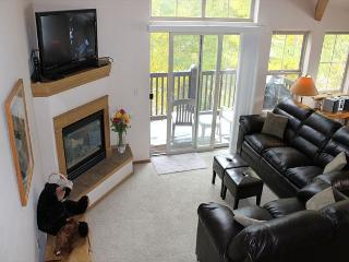 TLB8 Amazing Condo w/Wifi, Common Hot Tub, Mountain Views, Fireplace - Wildernest vacation rentals