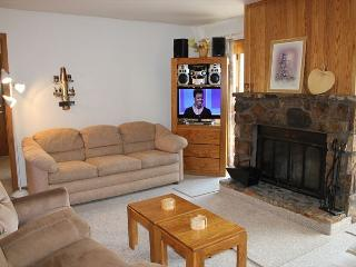 BV103BB Cute Condo w/ Elevator, Wifi, Fireplace, Clubhouse - Silverthorne vacation rentals