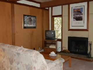 Heavenly Condo with 1 Bedroom, 1 Bathroom in Incline Village (19RCU) - Incline Village vacation rentals