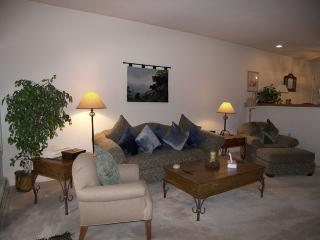 Ideal Condo with 3 Bedroom-3 Bathroom in Incline Village (225MC) - Crystal Bay vacation rentals