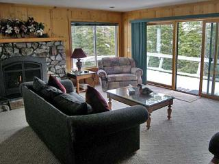 Lovely Cabin with 1 Bedroom-1 Bathroom in Incline Village (351A) - Incline Village vacation rentals
