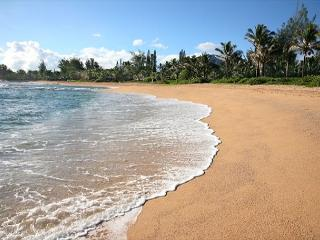 10% off May Dates!!Remodeled Haena Home!! Short walk to the beach and Tunnels - Kauai vacation rentals
