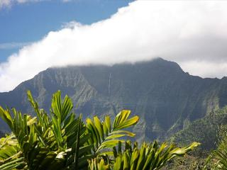 Hanalei - Spacious with Amazing Mountain Views & A/C!! - Princeville vacation rentals