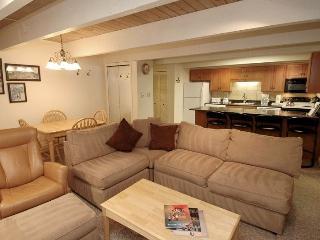 Chateau Chumont Unit 5 - Aspen vacation rentals
