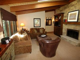 Little Nell Unit 11 - Aspen vacation rentals