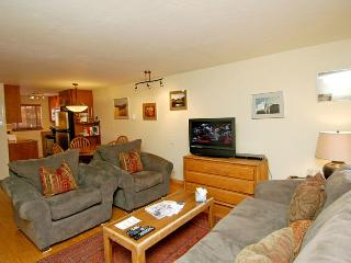 Silver Glo Unit 204 - Aspen vacation rentals