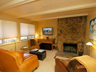 Silver Glo Unit 302 - Aspen vacation rentals