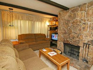 Silver Glo Unit 303 - Aspen vacation rentals