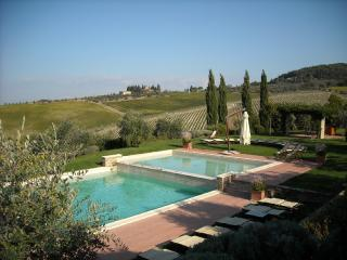 Apartment Rental in Tuscany, Montefiridolfi - Bianco 7 - Montefiridolfi vacation rentals