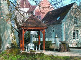 Chateau Rental in Burgundy, Voutenay sur Cure - Chateau Agnes - Arcy-sur-Cure vacation rentals