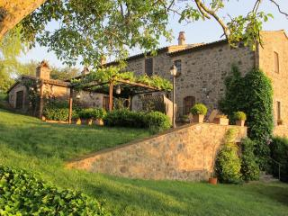 Country Home on the Tuscany Umbria Border - La Cappella dell'Alfina - Sorano vacation rentals