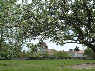 Chateau Rental in Aquitaine, Chenaud - La Ferme de la Dronne - Bouteilles-Saint-Sebastien vacation rentals
