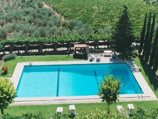 Historic Villa Apartment Near Florence - Villa Cavour - Pontassieve vacation rentals