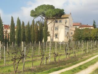 Villa in Tuscany in a Small Village - Villa Giovi - 10 - Capolona vacation rentals