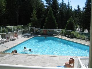 Private end unit with a deck, big hot tub in lodge,free parking/internet. - Whistler vacation rentals