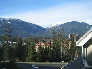 Mt view unit with great bed configuration for singles, kids, free parking - Whistler vacation rentals