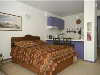 131 - Image 1 - Taos Ski Valley - rentals