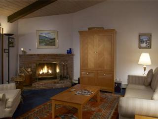 WOODBRIDGE #25E - Snowmass vacation rentals