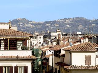 Apartment Center Florence - Piazza Santa Croce - Fiesole - Impruneta vacation rentals