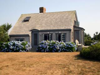 Super House in Nantucket (3586) - Image 1 - Nantucket - rentals