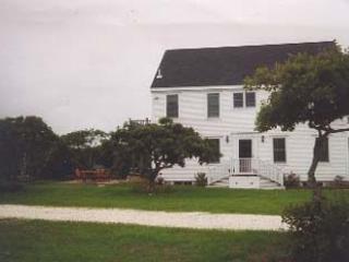 Amazing House with 3 BR, 3 BA in Nantucket (8230) - Image 1 - Nantucket - rentals