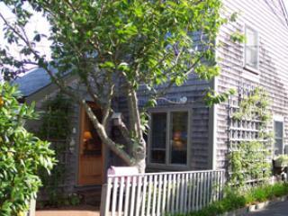 Nice 1 BR-2 BA House in Nantucket (8337) - Nantucket vacation rentals