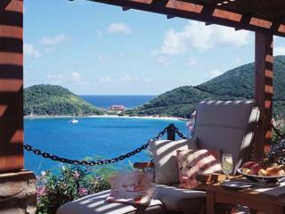 Nestled midway up a plush hillside above yacht- filled Deadman's Bay, this villa offers grand vistas and invaluable privacy. - Tortola vacation rentals