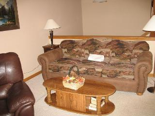 LR85L Lovely Townhouse w/Fireplace, Wifi, Common Hot Tub, Garage - Dillon vacation rentals
