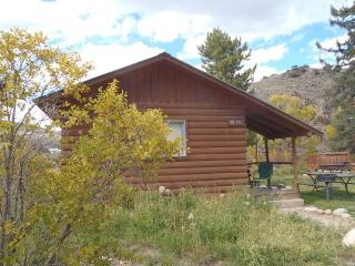 Rustic 1 BR Cabin Near River at Three Rivers Resort in Almont (#14) - Almont vacation rentals