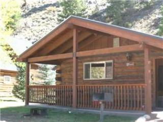 Comfortable and Clean 2 BR Cabin at Three Rivers Resort in Almont (#27) - Image 1 - Almont - rentals
