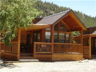 "Cozy ""Modular"" Style 1 BR with Sleeping Loft Cabin at Three Rivers Resort in Almont (#40) - Image 1 - Almont - rentals"