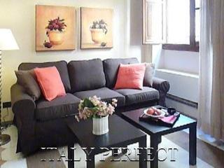 Perfect Ponte Vecchio Apt-Romantic-Central-Jacopo - Florence vacation rentals