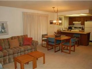 Hi Country Haus Unit 2501 - Image 1 - Winter Park - rentals