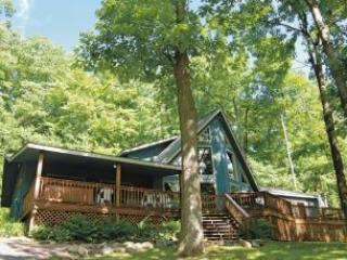 Mountain Joy - McHenry vacation rentals
