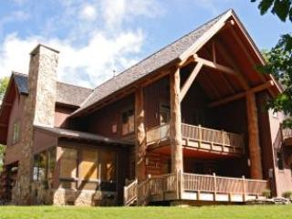 Slopeside Haven - Image 1 - McHenry - rentals