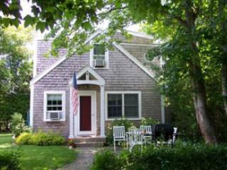 1216 - DARLING COTTAGE TUCKED IN AMONG TREES & GARDENS - Image 1 - Edgartown - rentals