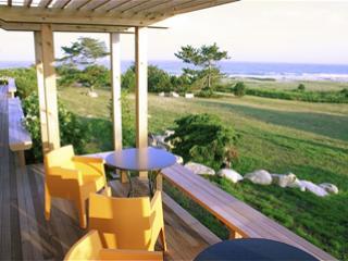 653 - ATLANTIC OCEAN BREEZES,GLORIOUS VIEWS! - Chilmark vacation rentals