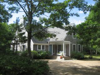 817 - LIGHT-FILLED CONTEMPORARY CAPE CLOSE TO THE BIKE PATH - Edgartown vacation rentals