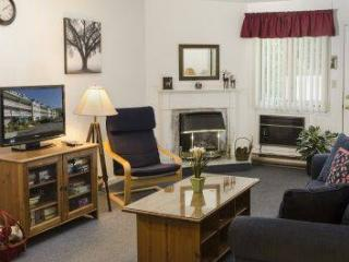 Spacious 1BR condo with walk-in closet, full bath - B1 123B - Lincoln vacation rentals