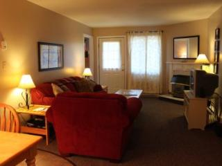 1BR condo with work station, free Wi-Fi - C2 236C - Lincoln vacation rentals