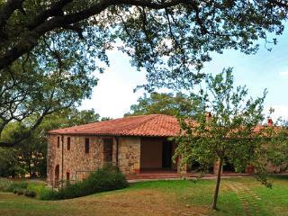 1108 - Sarteano vacation rentals