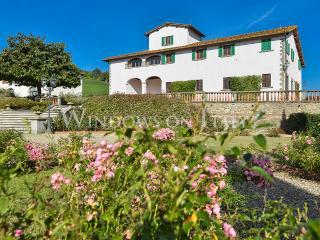 1232 - Figline Valdarno vacation rentals