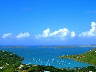Treasure Ridge - Peter Bay vacation rentals