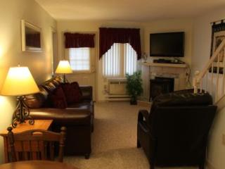 2BR multi-level condo with free Wi-Fi - 3C 336C - Lincoln vacation rentals