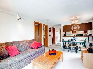 Mark IX #1 - Breckenridge vacation rentals